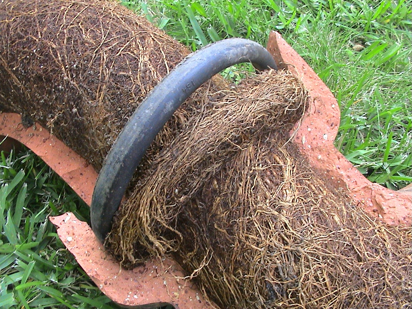 Don T Neglect Your Sewer Line Minneapolis Plumbing