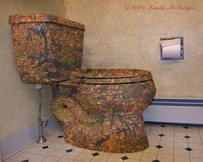 Awesome Toilets Minneapolis Plumbing Plumbers Mn St