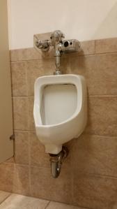 Clogged backed up urinal